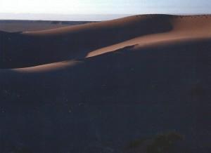 Lumière du soir sur les dunes, sud marocain (février 2001)