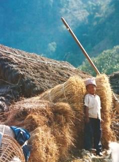 Jeune paysan, vallée des Annapurnas, Népal (mars 2000)