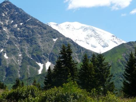 A la fenêtre du Tramway du Mont-Blanc (juillet 2014)